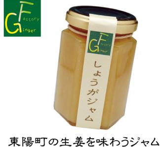 生姜を使用した加工品4