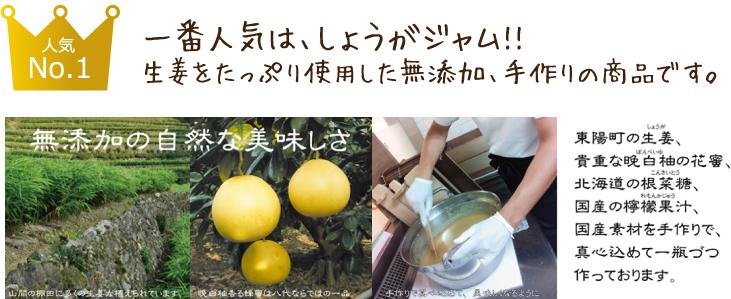 生姜を使用した加工品5